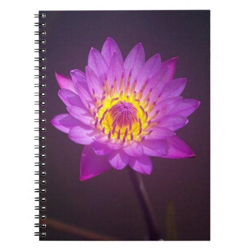 Purple Lotus Flower Notebooks