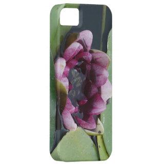 Purple Lotus Photo iPhone SE + iPhone 5/5S iPhone SE/5/5s Case