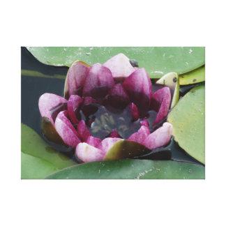 Purple Lotus Photography Single Print