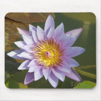 Purple Lotus/Water Lily Mousepad
