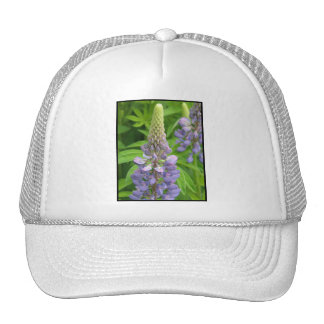 Purple Lupine Flowers Baseball Hat