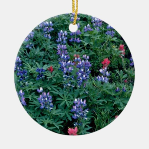Purple Lupine, Indian Paintbrush flowers Ornament