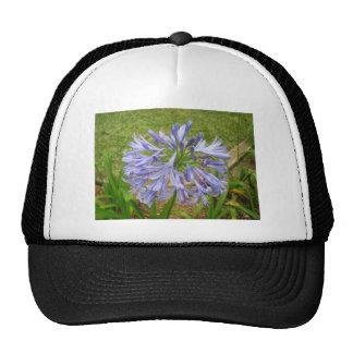 Purple Maui Flower Trucker Hat