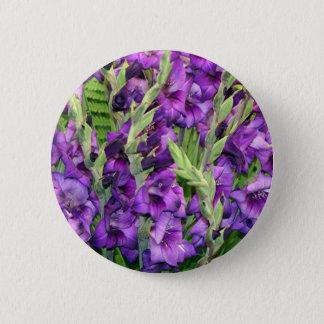 Purple mauve gladioli flowers button