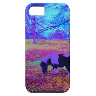 Purple miniature horse iPhone 5 covers