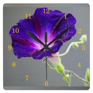 Purple Morning Glory Square Wallclock