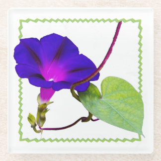 Purple Morning Glory Floral Photography Cut Out Glass Coaster