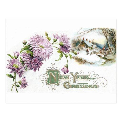 Purple Mums Vintage New Year with Vignette Postcard