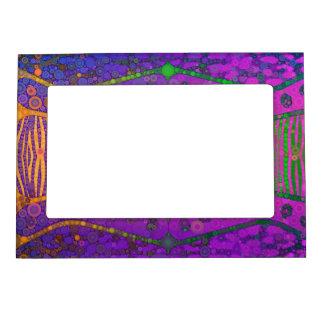Purple Orange Green Florescent Zebra Magnetic Picture Frame
