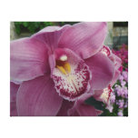 Purple Orchid and Garden Colorful Floral Canvas Print