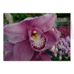 Purple Orchid and Garden Colorful Floral Card