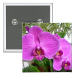 Purple Orchid Button