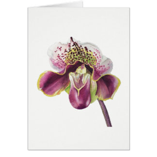 "Purple Orchid Card 5"" X 7"" Blank, with envelope"
