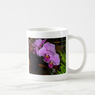 Purple Orchid Classic White Coffee Mug