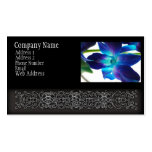 Purple Orchid Close Up on White Business Card Template