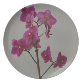 Purple Orchid Dinner Plate