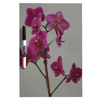 Purple Orchid Dry-Erase Board
