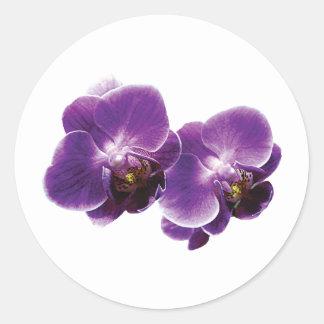 Purple Orchid Duo Round Sticker