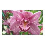 Purple Orchid Elegant Floral Photo Rectangular Sticker