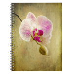 Purple Orchid Floral Flower Aged Antique Spiral Note Books