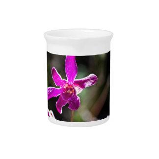 Purple Orchid Flower Pitchers