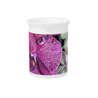 Purple Orchid Flower Beverage Pitchers
