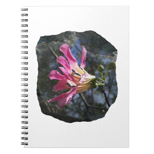 Purple orchid flower tree n sky rock background spiral notebook