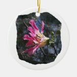 Purple orchid flower tree n sky rock background christmas ornaments