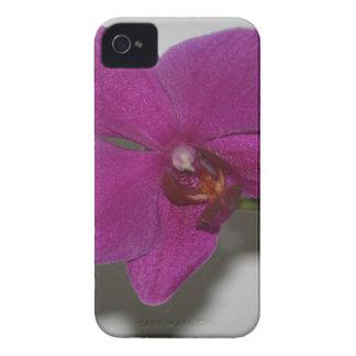 Purple Orchid iPhone 4 Case