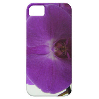 Purple Orchid iPhone 5 Case