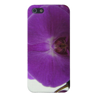 Purple Orchid iPhone 5 Hard Case Case For iPhone 5