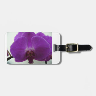 Purple Orchid Luggage Tag