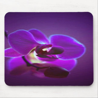Purple Orchid Mouse Pad