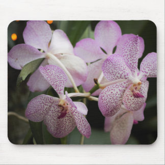 Purple Orchid Mousepad II