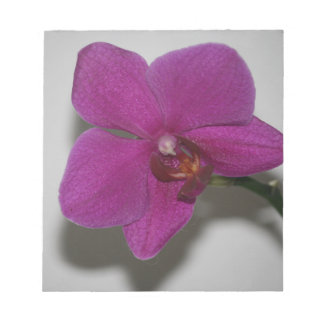 Purple Orchid Notepad