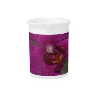 Purple Orchid Pitchers