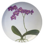 Purple Orchid Plate