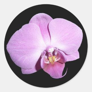 Purple Orchid Round Sticker