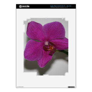 Purple Orchid Skins For iPad 3