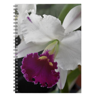 Purple Orchid Spiral Photo Notebook