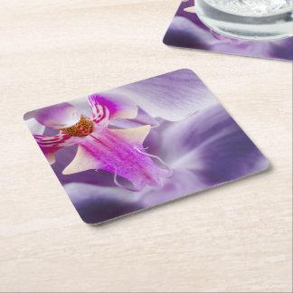 Purple Orchid Square Paper Coaster