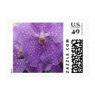 purple orchid stamp