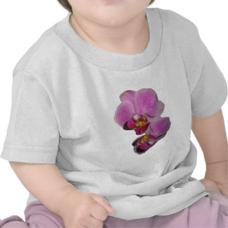 Purple Orchid Shirts