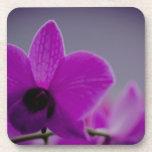 Purple Orchids Beverage Coaster