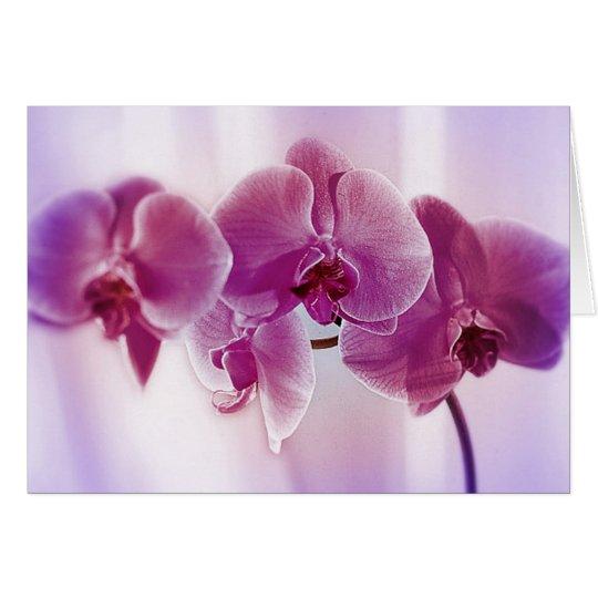 Purple Orchids Card
