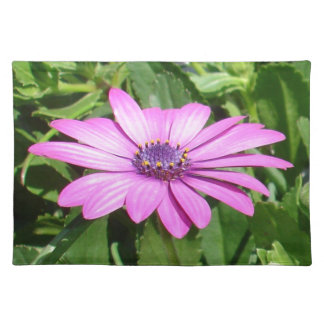 Purple Osteospermum Against Green Leaves Placemat