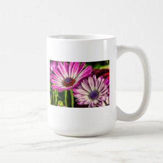 Purple Osteospermum Coffee Mugs