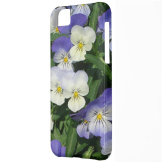 Purple Pansies Case For iPhone 5C