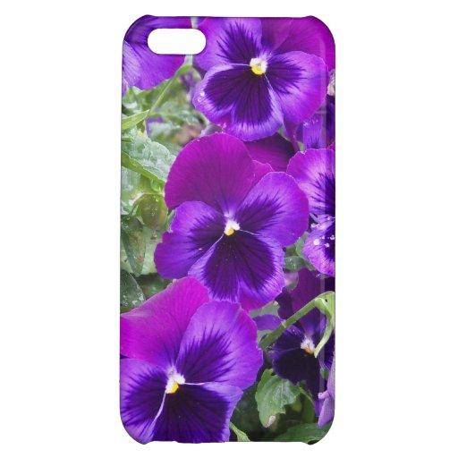 Purple Pansies iPhone 5C Covers