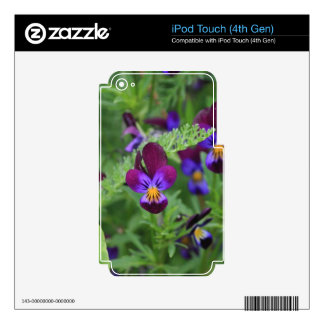Purple Pansies iPod Touch 4G Decals